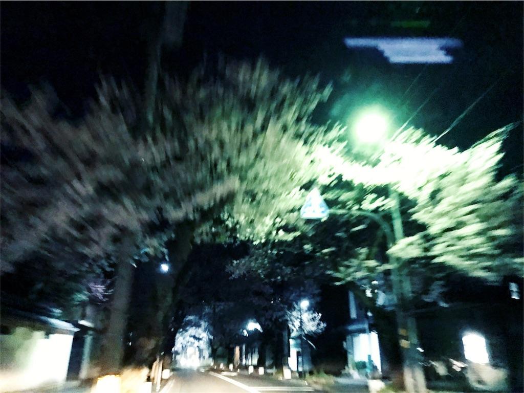 f:id:habutaemochiko:20170411001557j:image