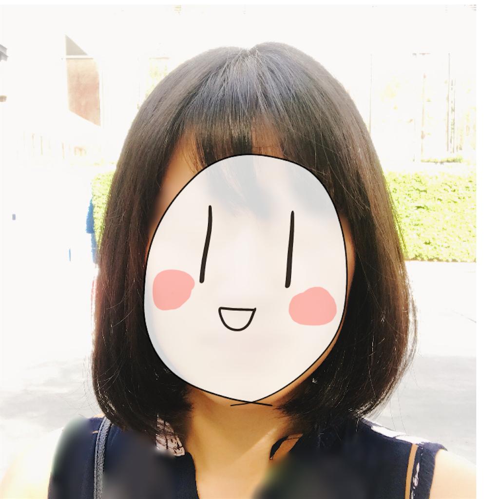 f:id:habutaemochiko:20190330194415p:image
