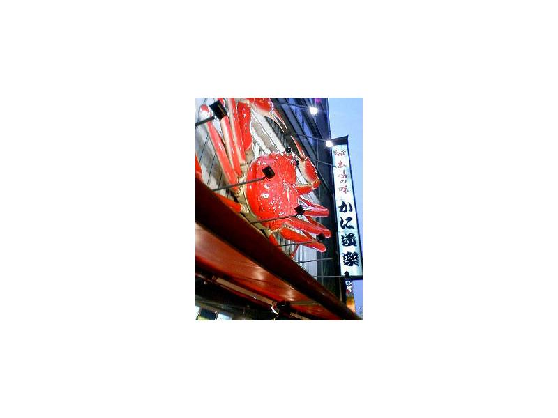 f:id:hachi-log:20070906181434j:plain