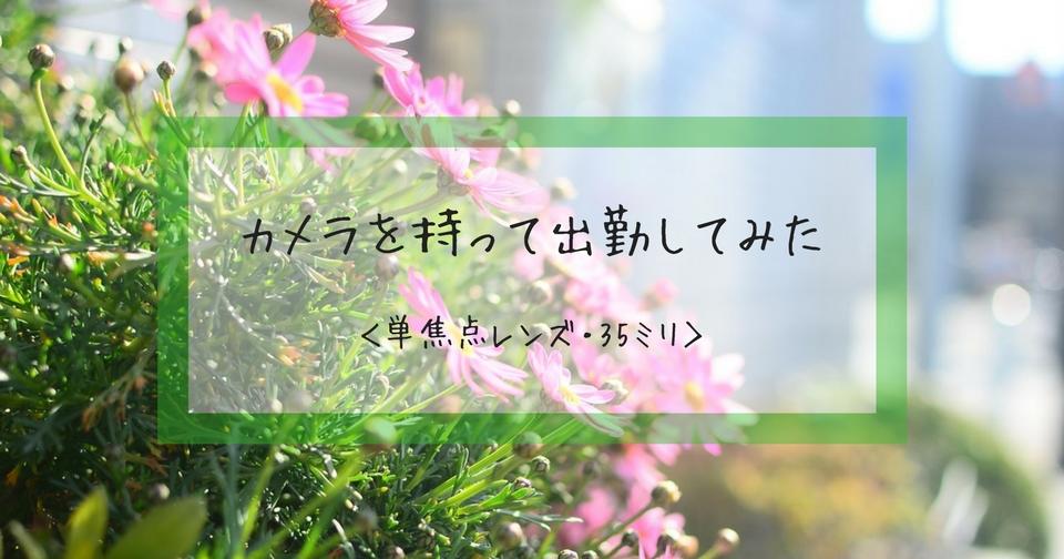 f:id:hachi-log:20180315065138j:plain