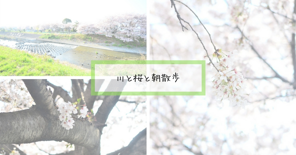 f:id:hachi-log:20180409042220j:plain