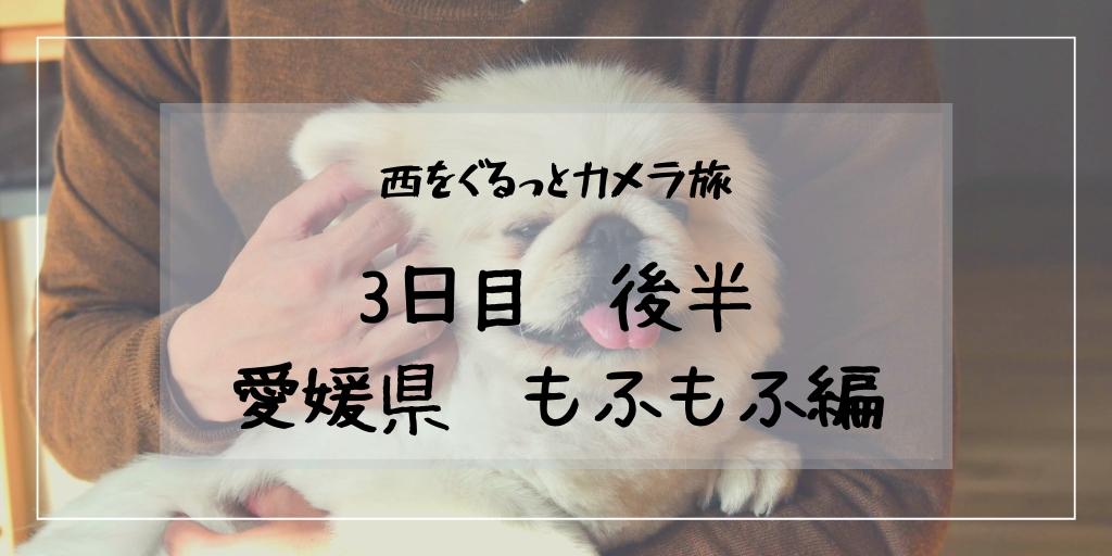 f:id:hachi-log:20190302020054j:plain