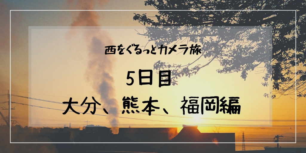 f:id:hachi-log:20190309031754j:plain
