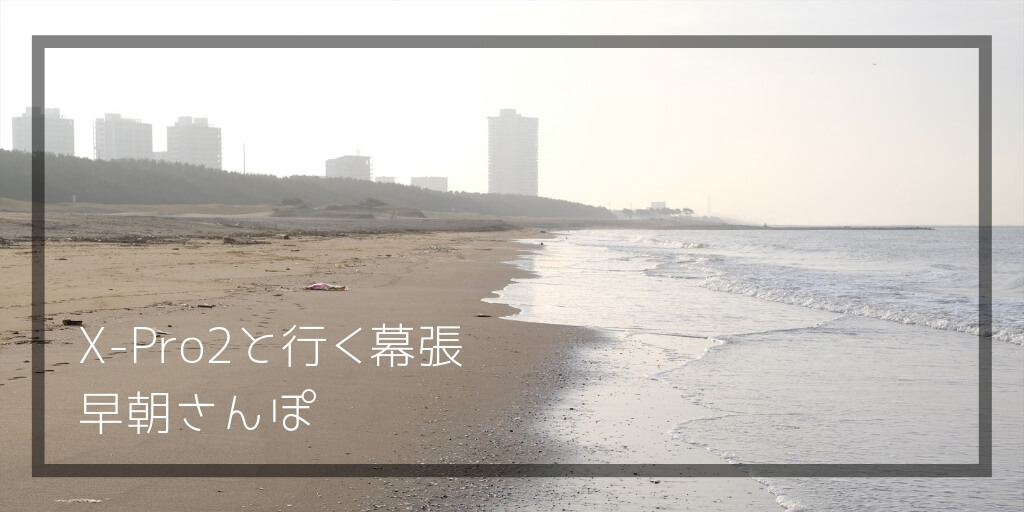f:id:hachi-log:20190322165057j:plain