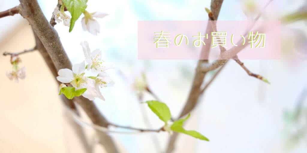 f:id:hachi-log:20190330084025j:plain