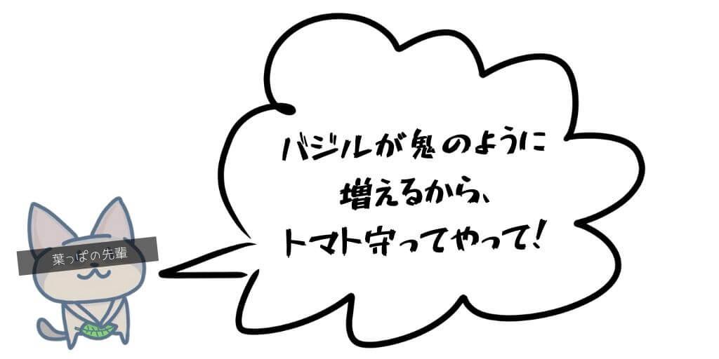 f:id:hachi-log:20190517093850j:plain