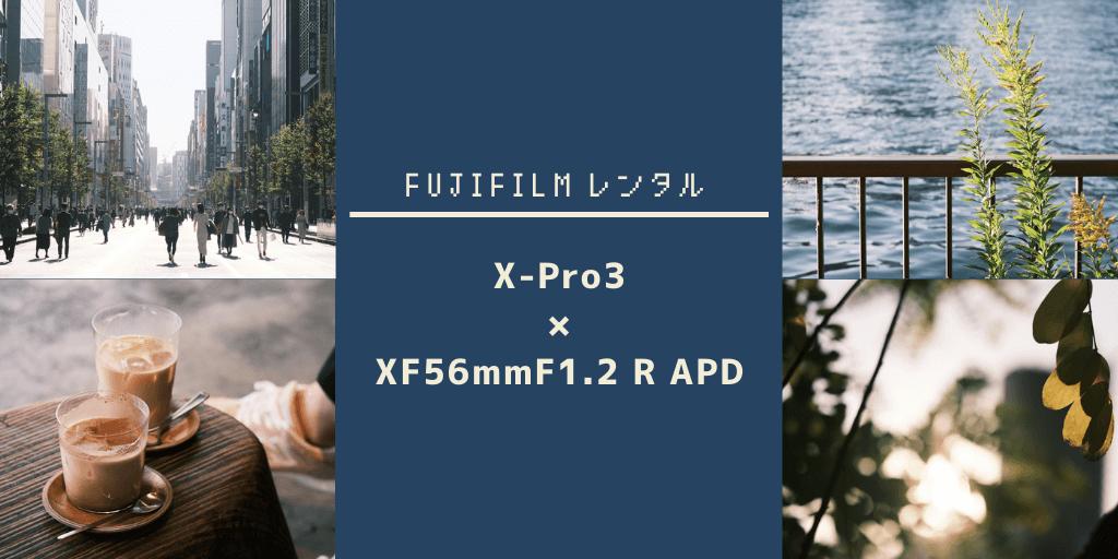 f:id:hachi-log:20201115080302p:plain