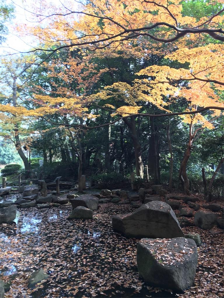 f:id:hachi-nori:20170104182049j:image
