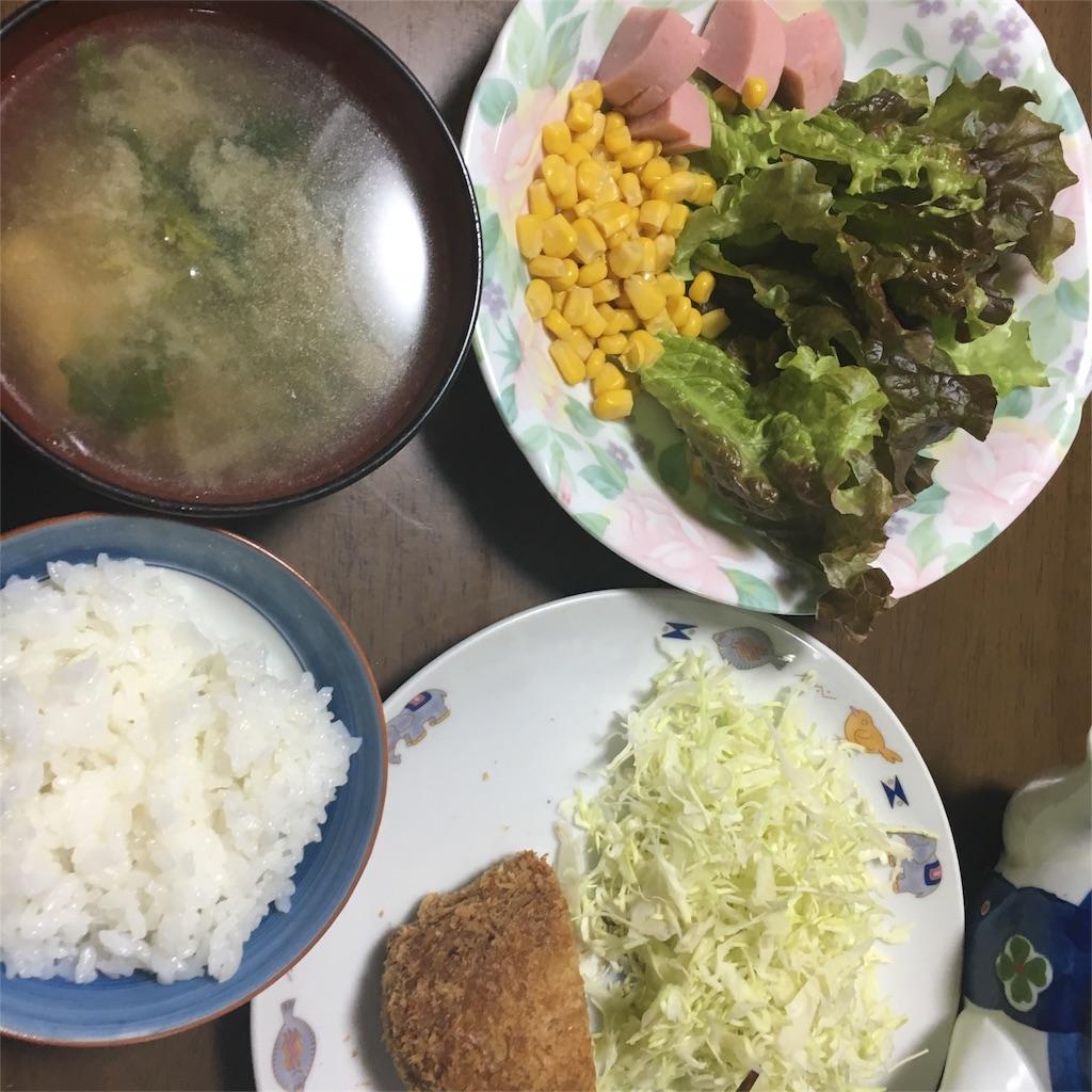 f:id:hachi-nori:20170104190311j:image