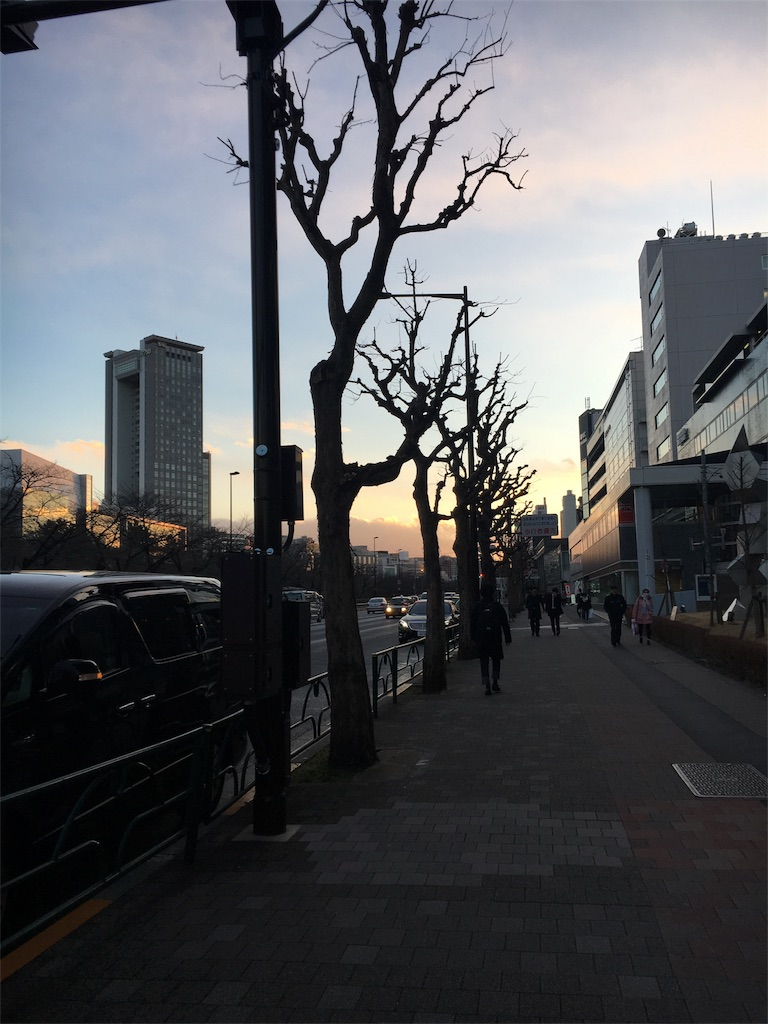 f:id:hachi-nori:20170123214822j:image