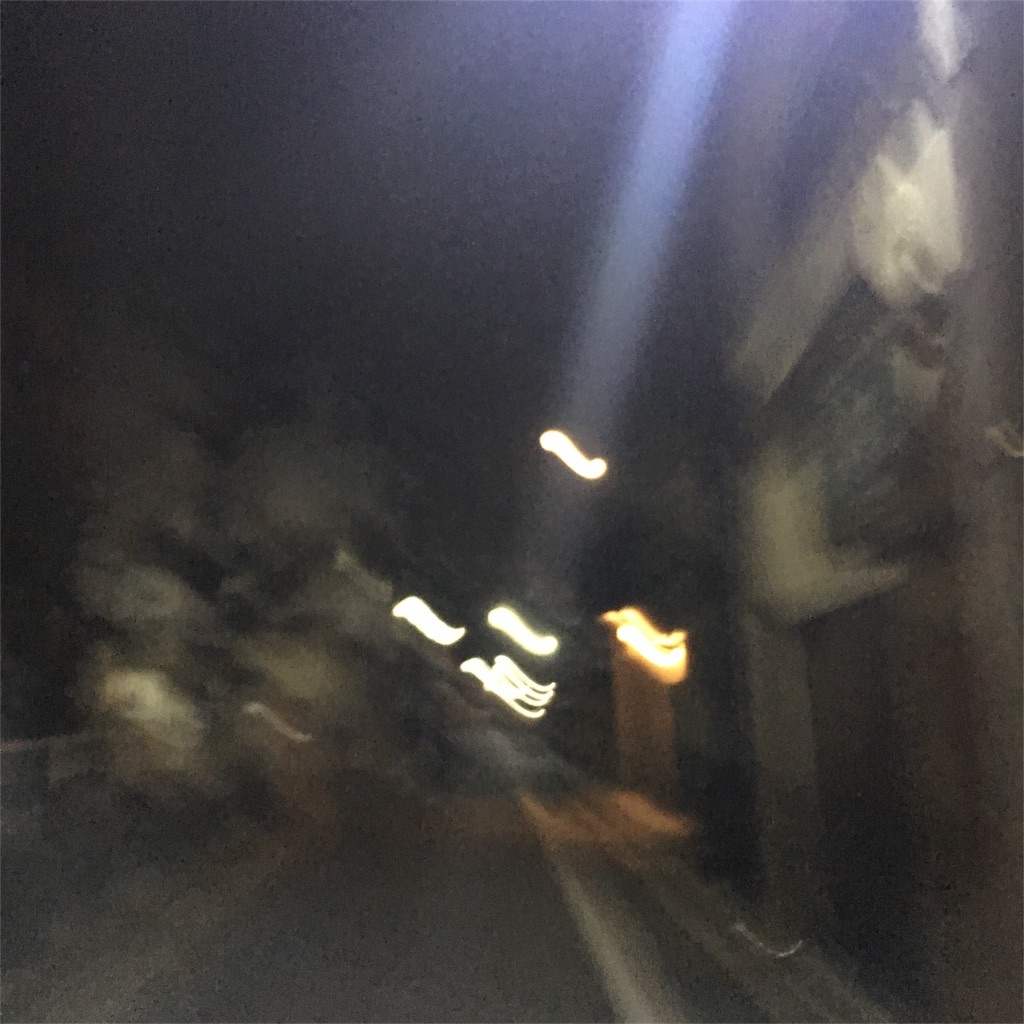 f:id:hachi-nori:20170214174758j:image