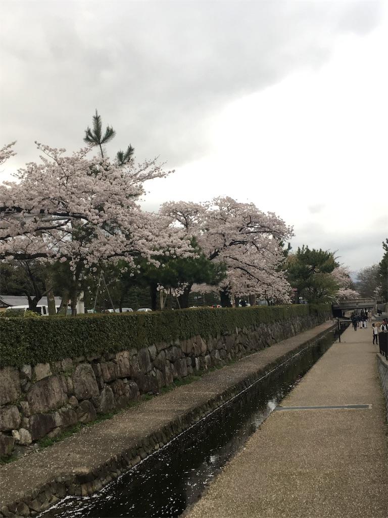 f:id:hachi-nori:20170410002302j:image