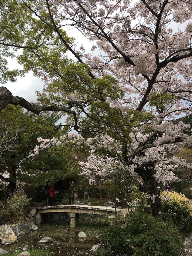 f:id:hachi-nori:20170410222040j:image
