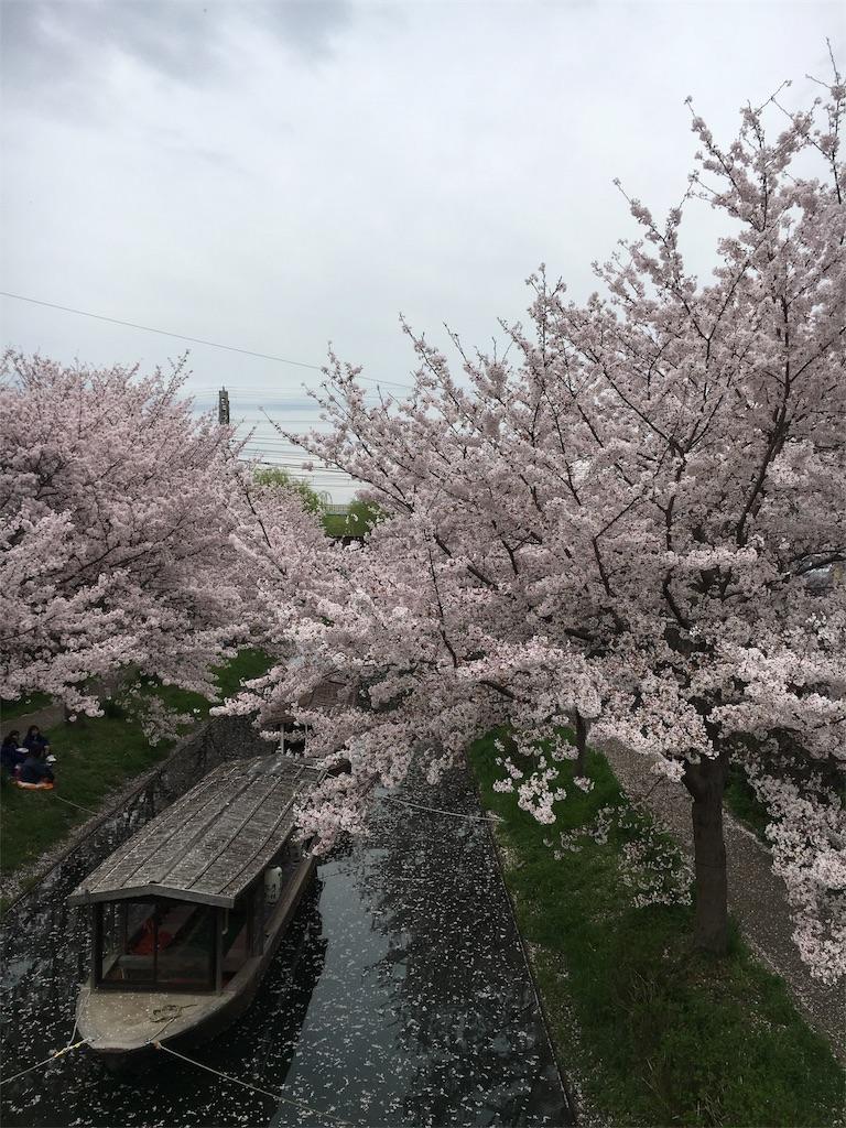 f:id:hachi-nori:20170410222047j:image