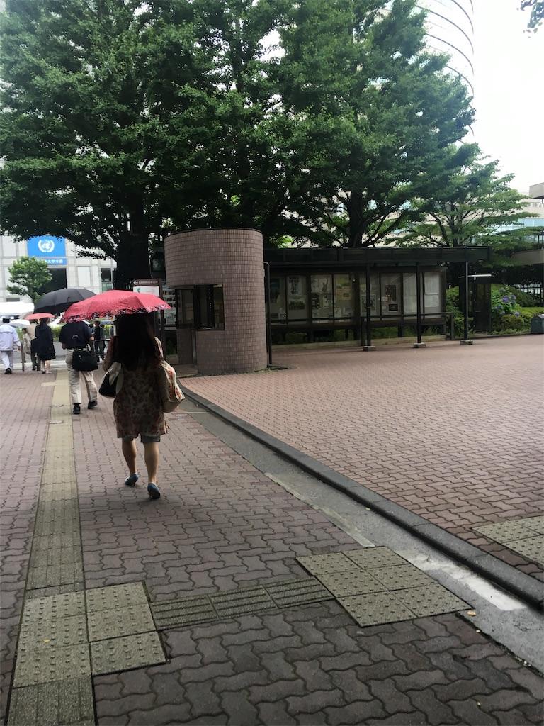 f:id:hachi-nori:20170618194919j:image