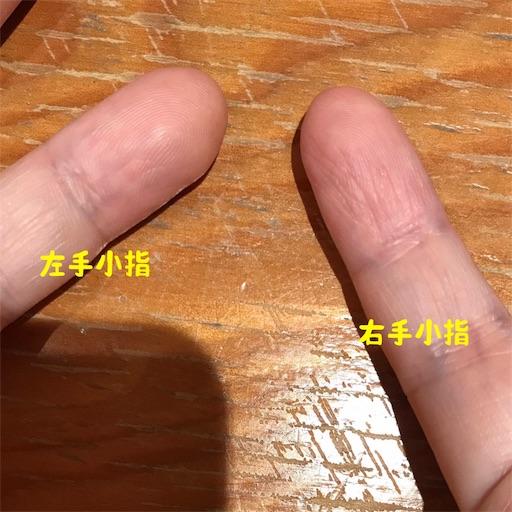 f:id:hachi_and_kuma:20170912173127j:image