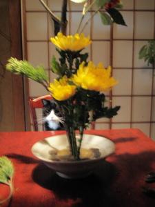 f:id:hachibei-k:20071230052011j:image