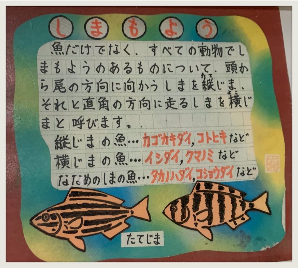 f:id:hachiburo:20200801202625j:image