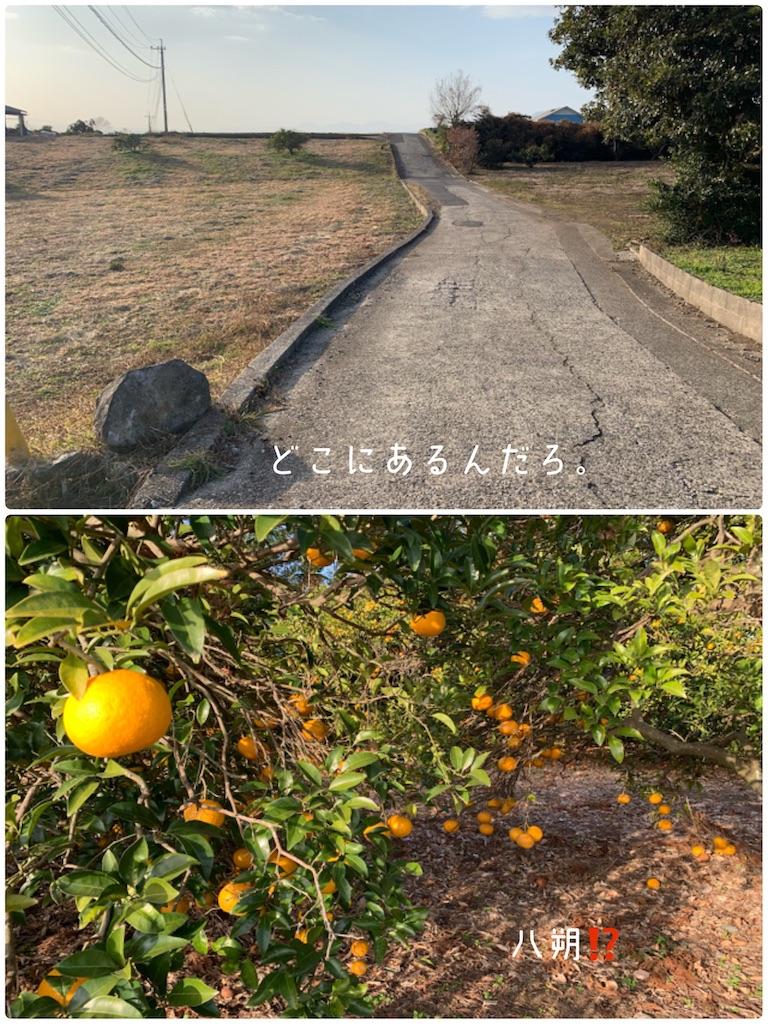 f:id:hachiburo:20210222183138j:image