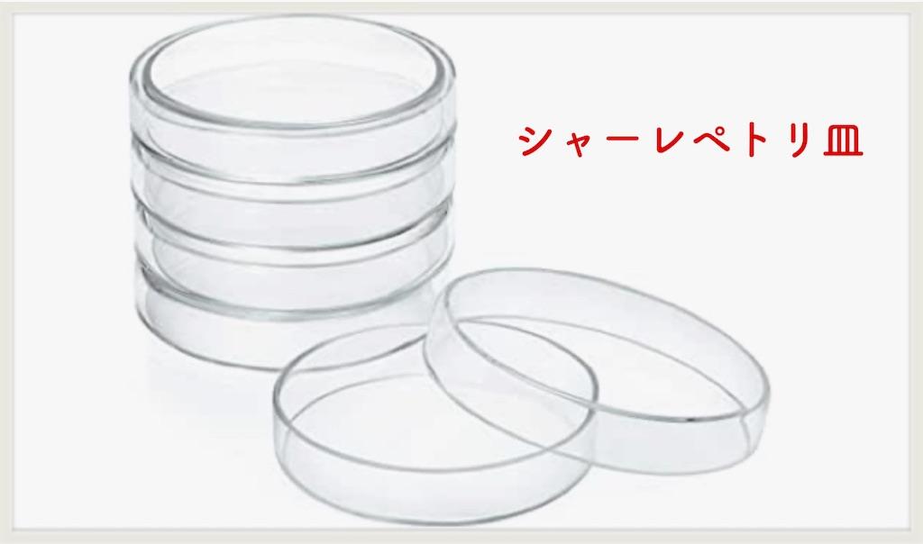 f:id:hachiburo:20210415153905j:image