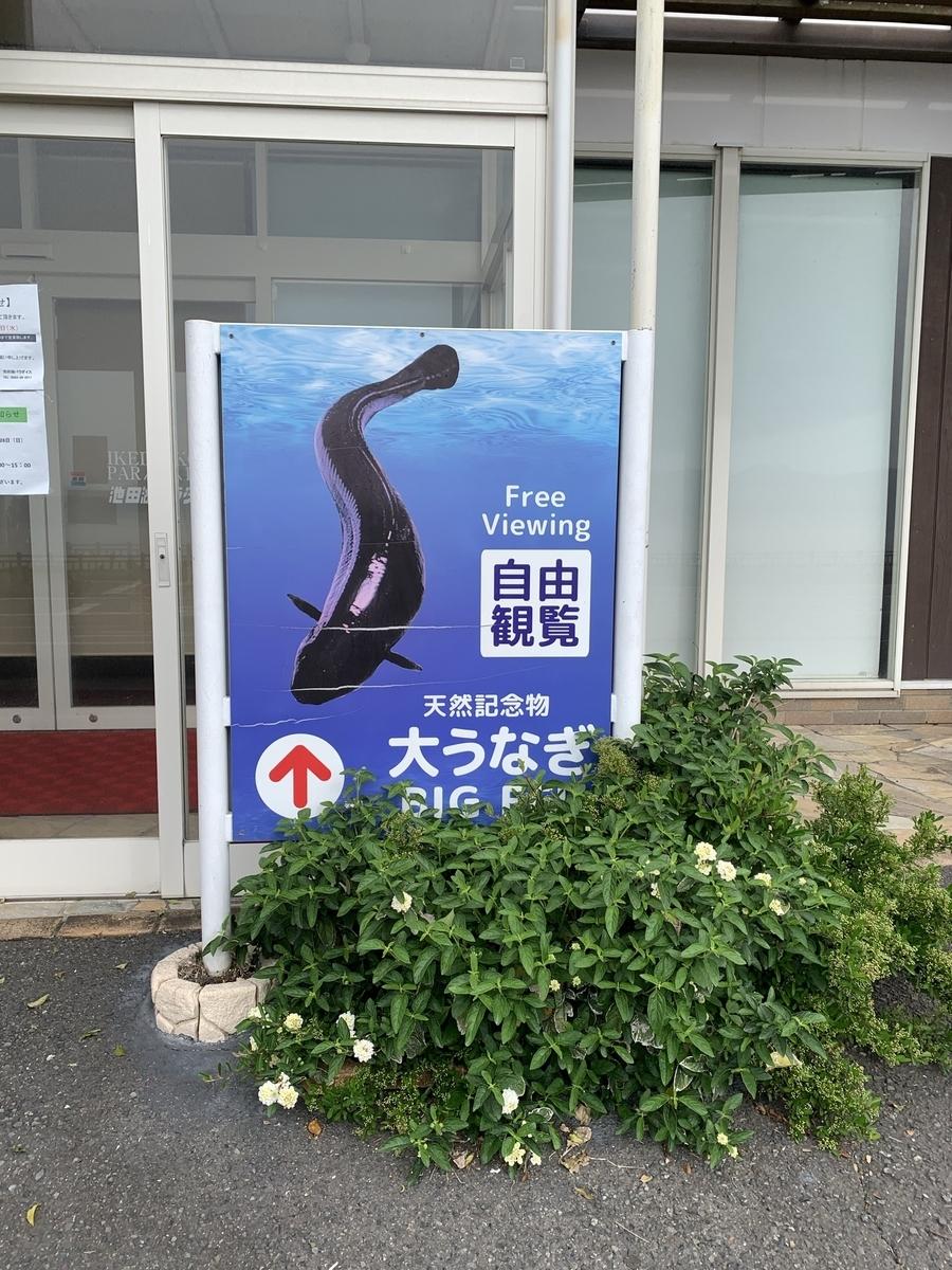 f:id:hachiburo:20210704101056j:plain