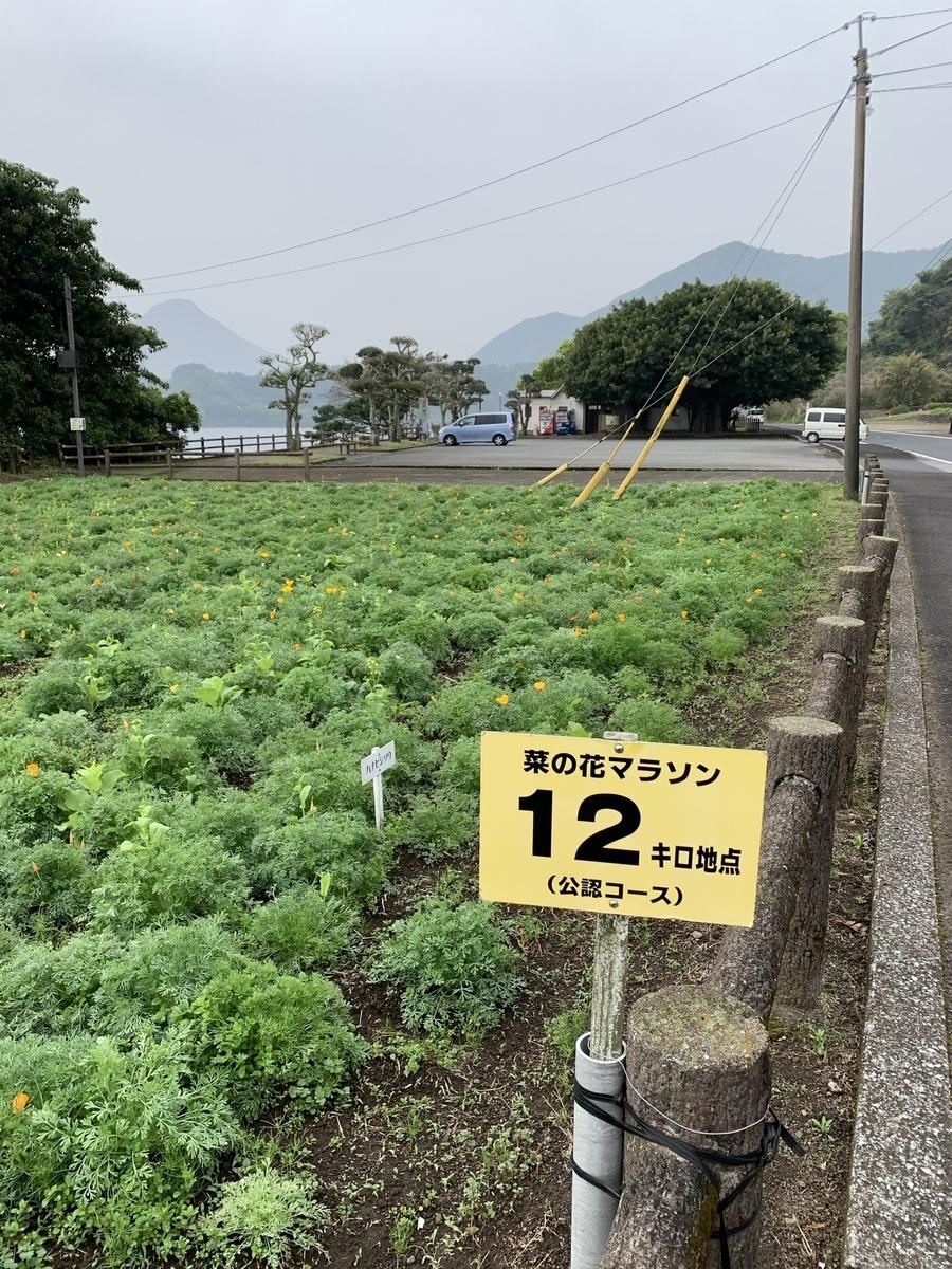 f:id:hachiburo:20210704101120j:plain