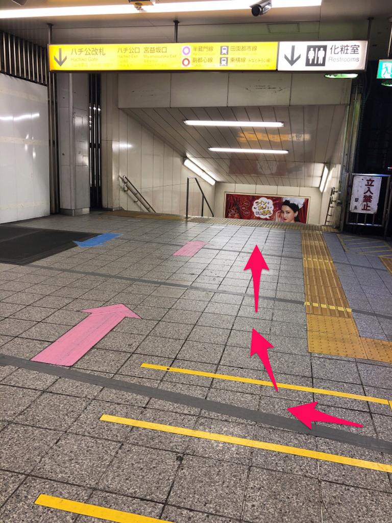 f:id:hachico-tokyo:20190428093833p:image