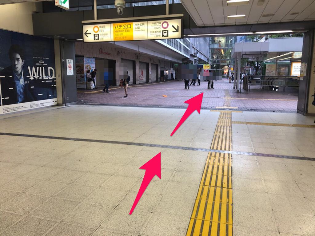 f:id:hachico-tokyo:20190428094732p:image