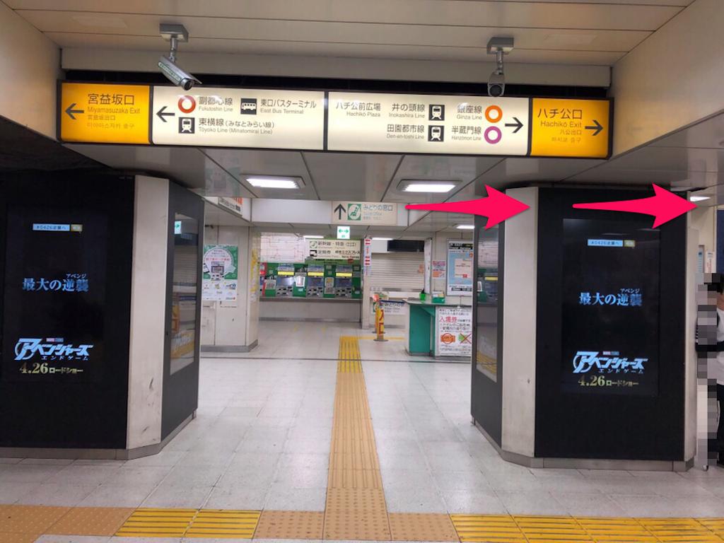 f:id:hachico-tokyo:20190428113906p:image