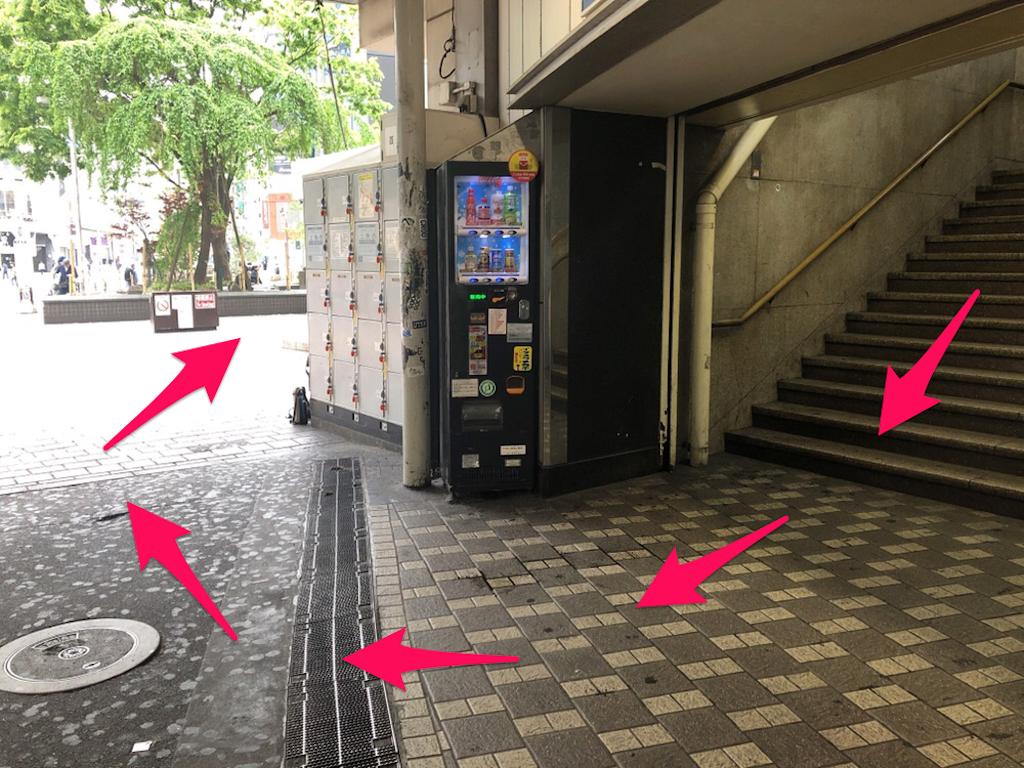 f:id:hachico-tokyo:20190428115234p:image