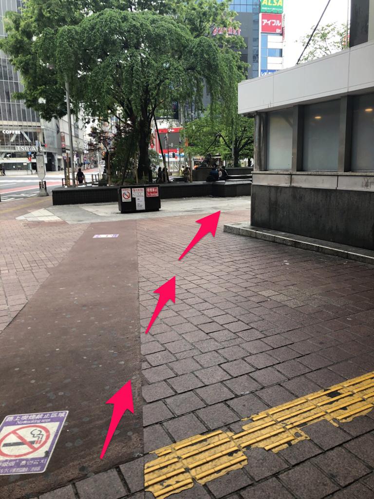 f:id:hachico-tokyo:20190428115246p:image