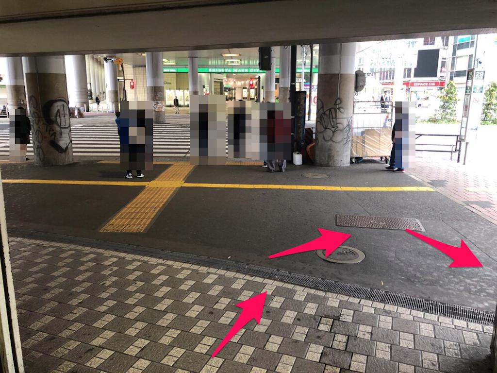 f:id:hachico-tokyo:20190428115307p:image