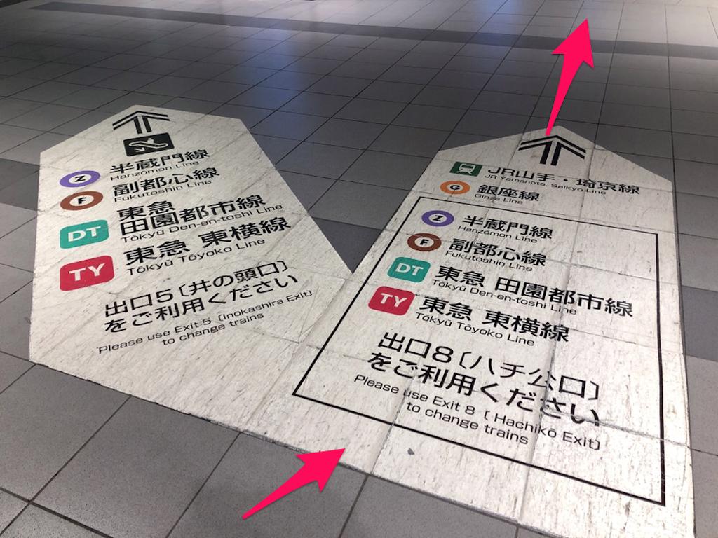 f:id:hachico-tokyo:20190428115331p:image