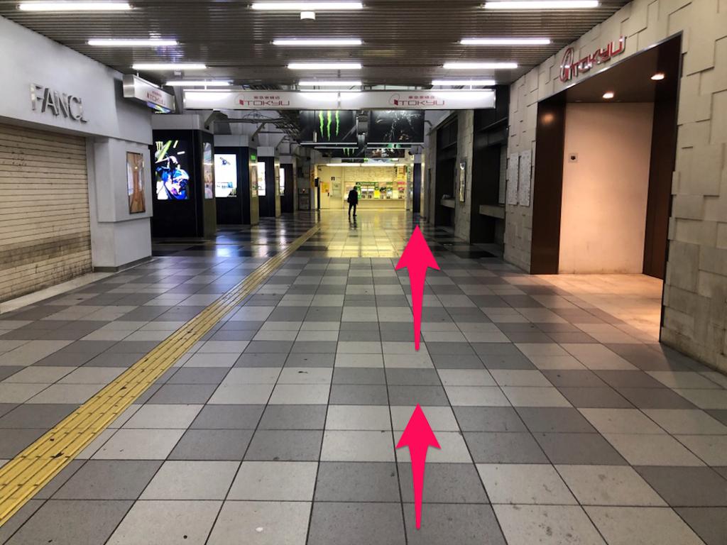 f:id:hachico-tokyo:20190428122018p:image