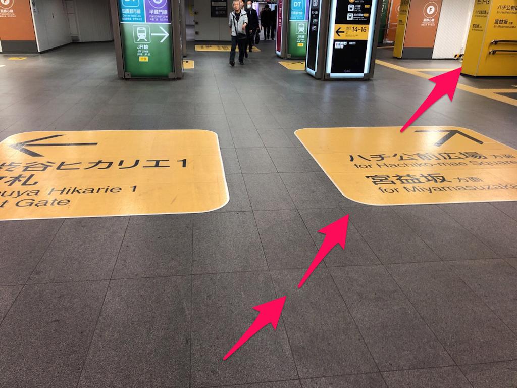 f:id:hachico-tokyo:20190428144726p:image
