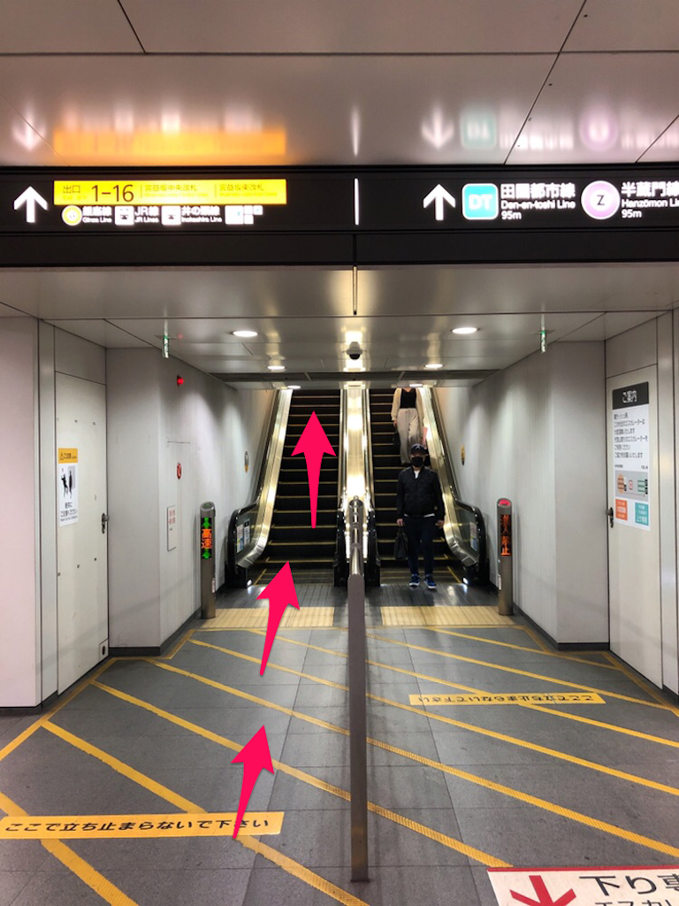 f:id:hachico-tokyo:20190428144829p:image