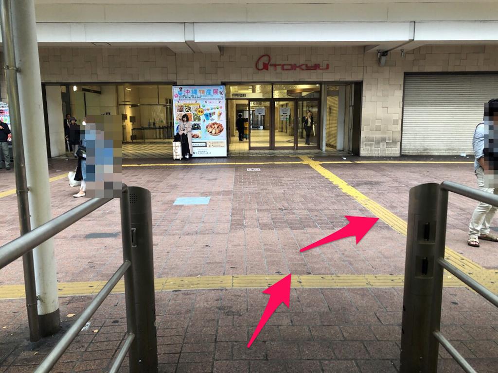 f:id:hachico-tokyo:20190428152402p:image