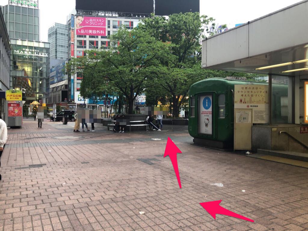 f:id:hachico-tokyo:20190428155122p:image