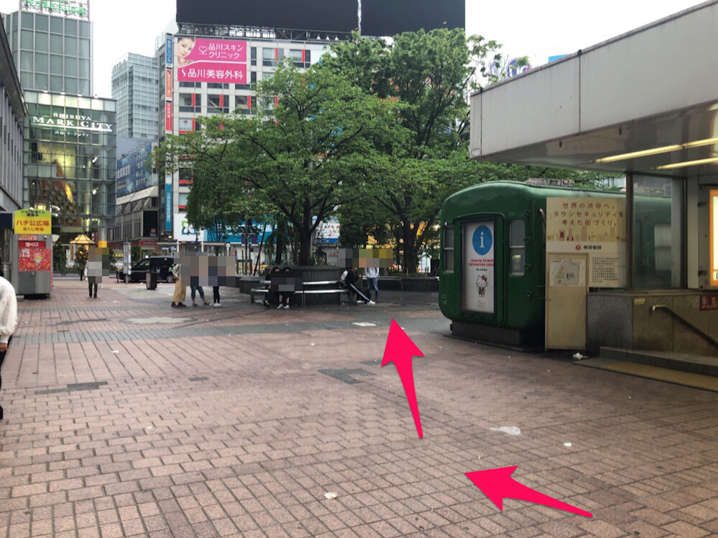 f:id:hachico-tokyo:20190429193440p:image