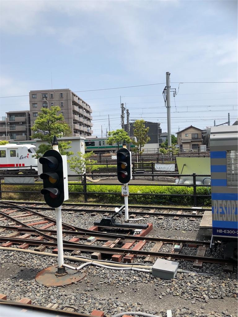 f:id:hachico-tokyo:20190513151617j:image