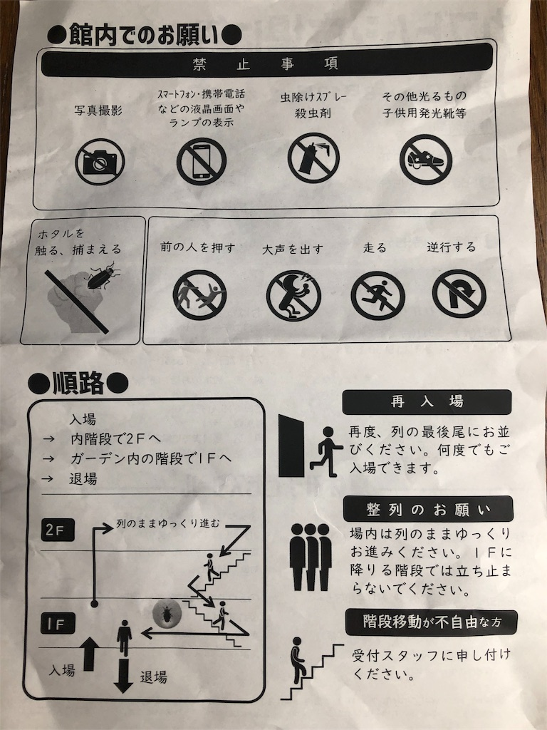 f:id:hachico-tokyo:20190621092658j:image