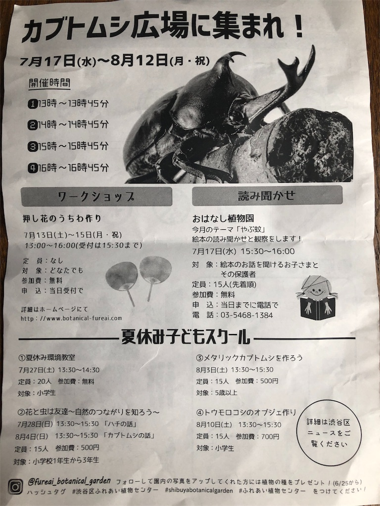 f:id:hachico-tokyo:20190621092720j:image