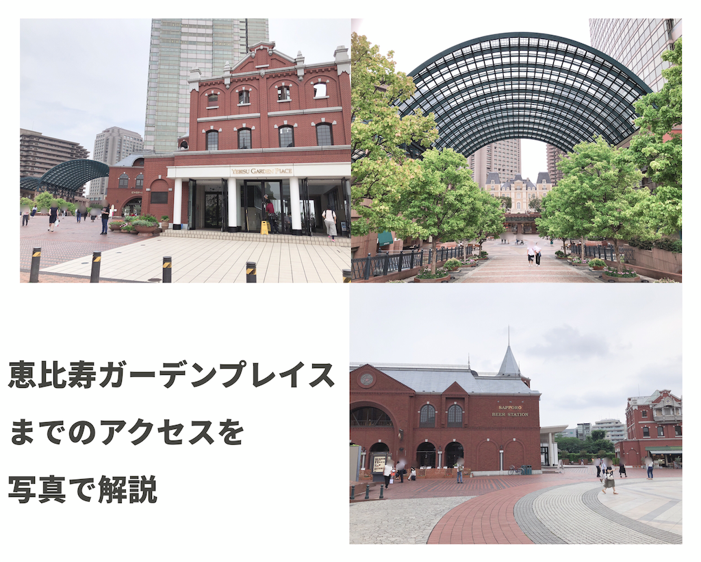 f:id:hachico-tokyo:20190703124256p:image