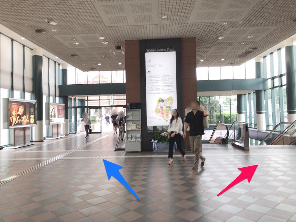f:id:hachico-tokyo:20190703130735p:image