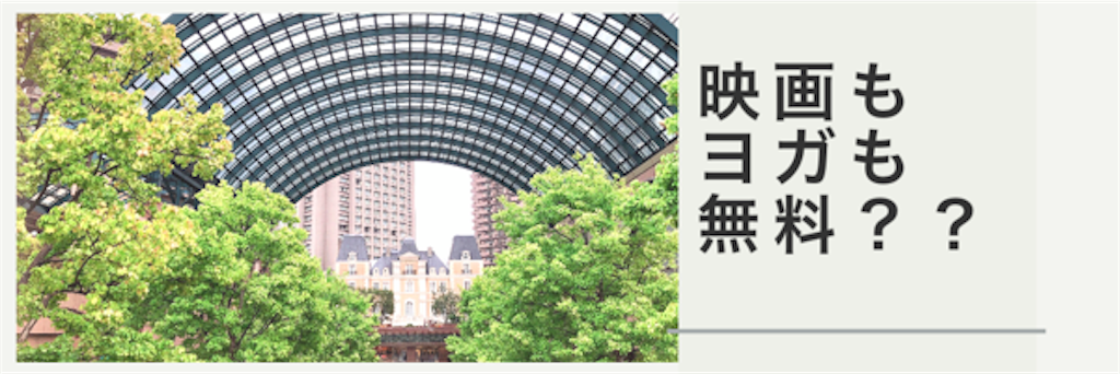 f:id:hachico-tokyo:20190708135851p:image
