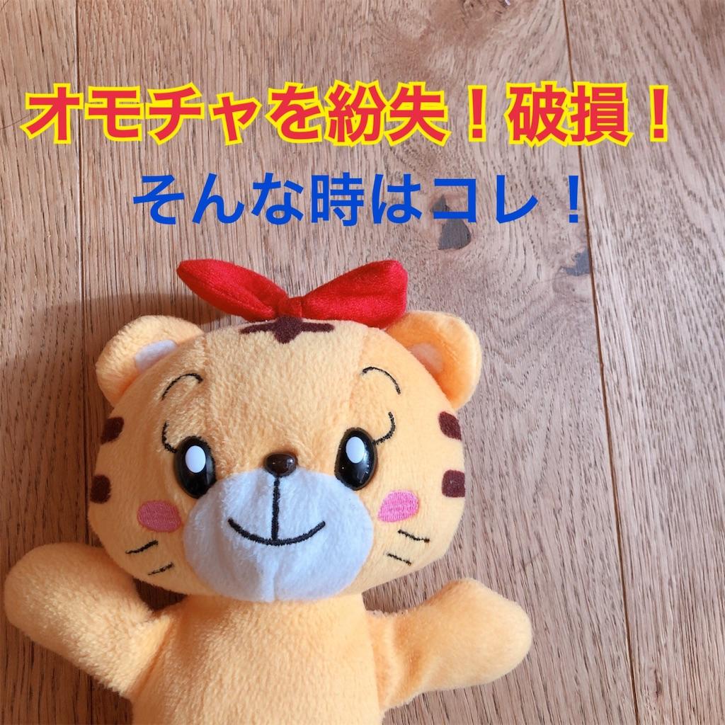f:id:hachico-tokyo:20190911151331j:image