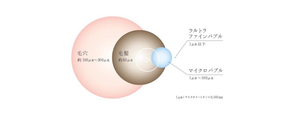 f:id:hachico-tokyo:20200305114129j:image