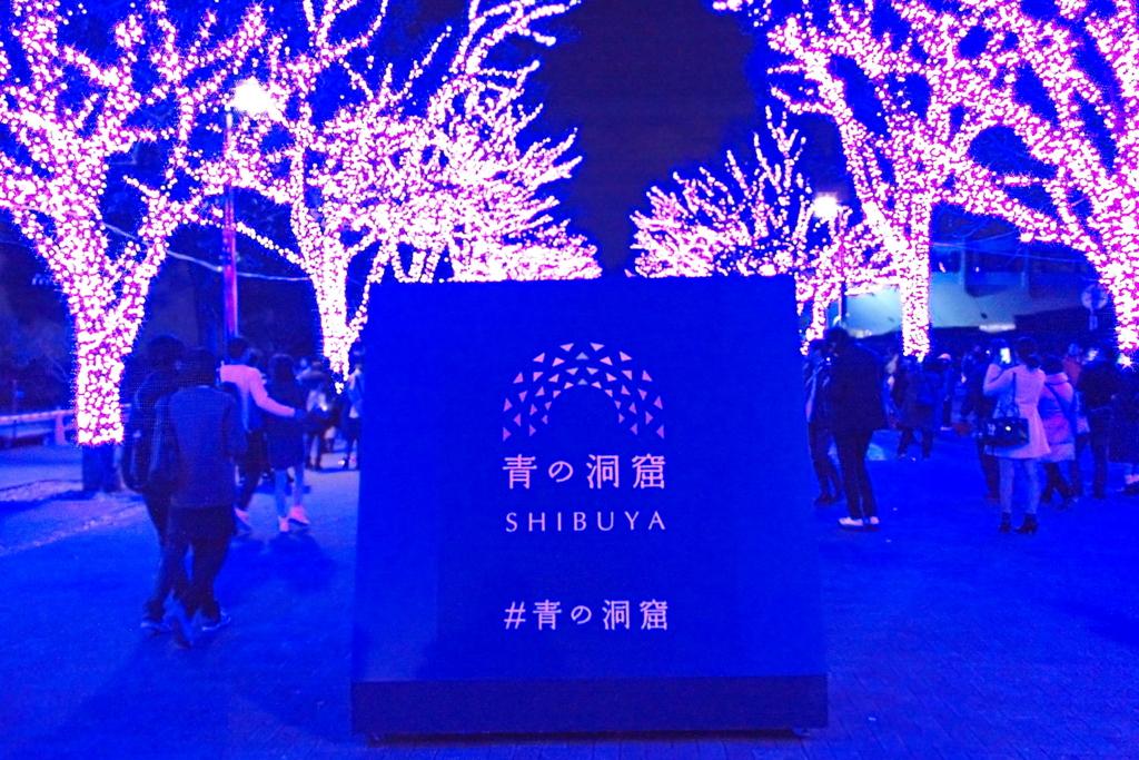 f:id:hachiko-shibuya:20161210180315j:plain