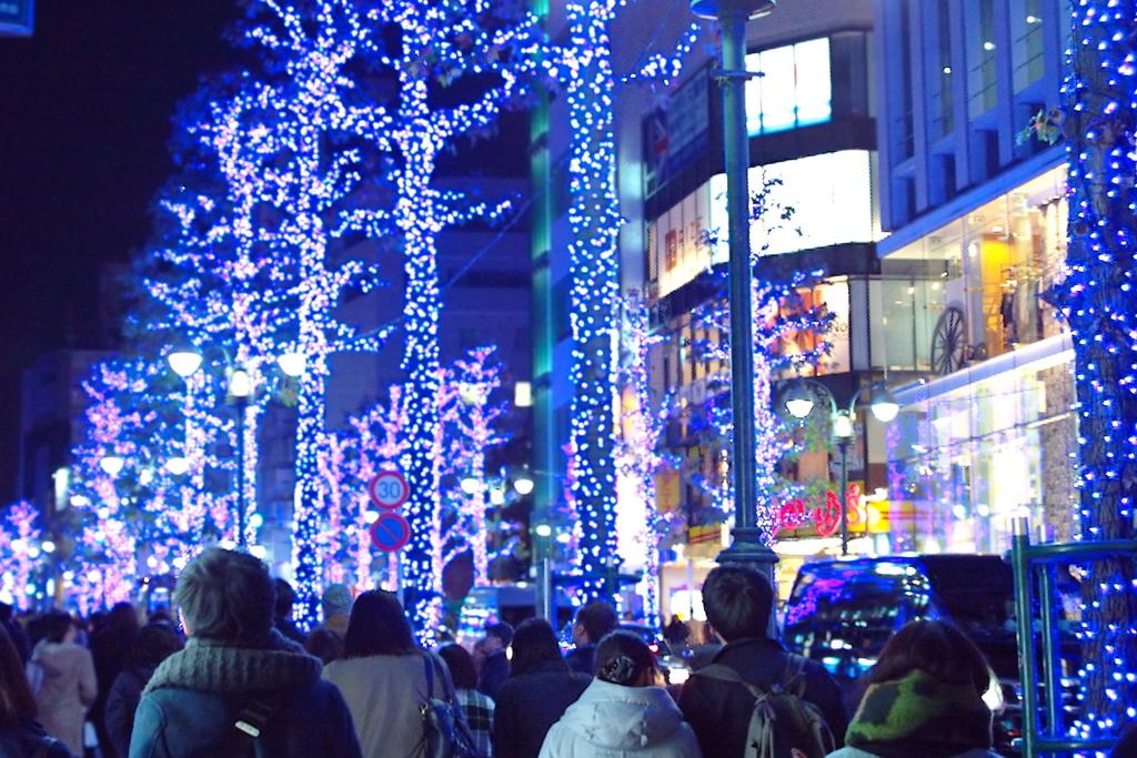 f:id:hachiko-shibuya:20161210182644j:plain