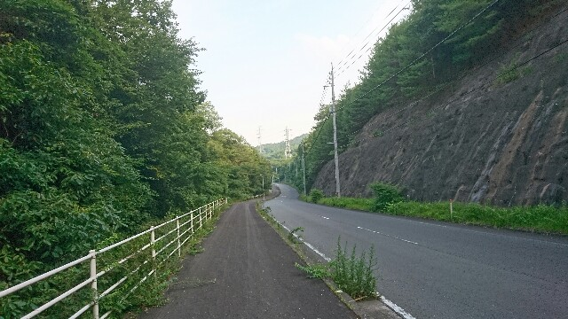 f:id:hachimaki0619:20170714163618j:image